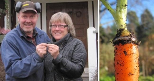 Una pareja de esposos con un anillo a un costado de una zanahoria