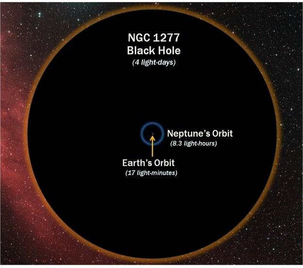 Tamaño de un agujero negro en comparación con la órbita de la Tierra y la de Neptuno.