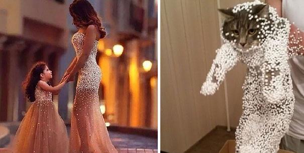 Vestido y gato iluminados