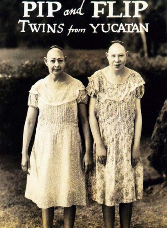 pip y flip los gemelos de yucatan