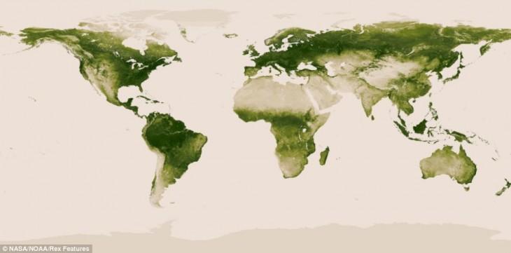 mapas de la vegetacion mundial
