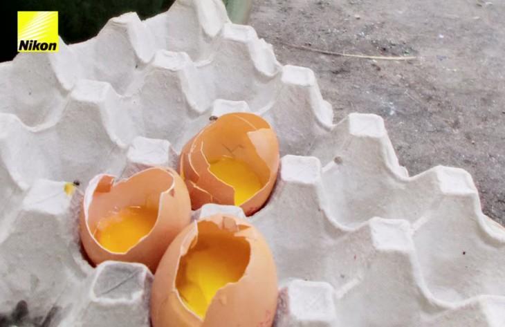 3 huevos rotos en el carton