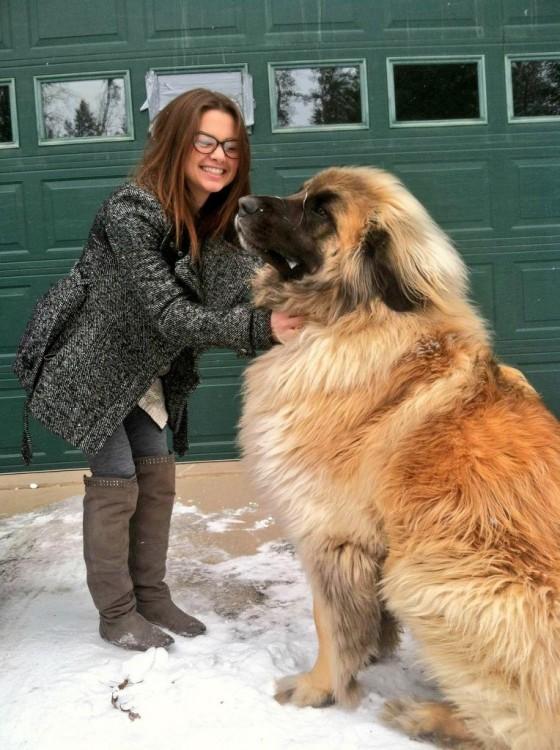 perro grande al lado de mujer