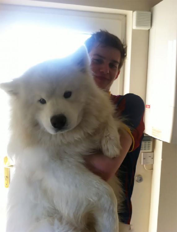 perro blanco abrazando a muchachi