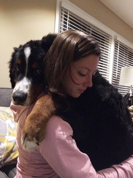 perro negro abrazando a mujer