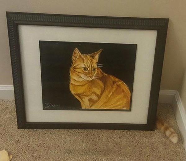 gato piensa que jamas lo encontraran