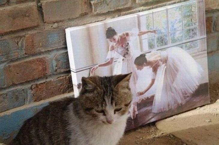 gato que parece ser acariciado por unas bailarinas del cuadro del fondo