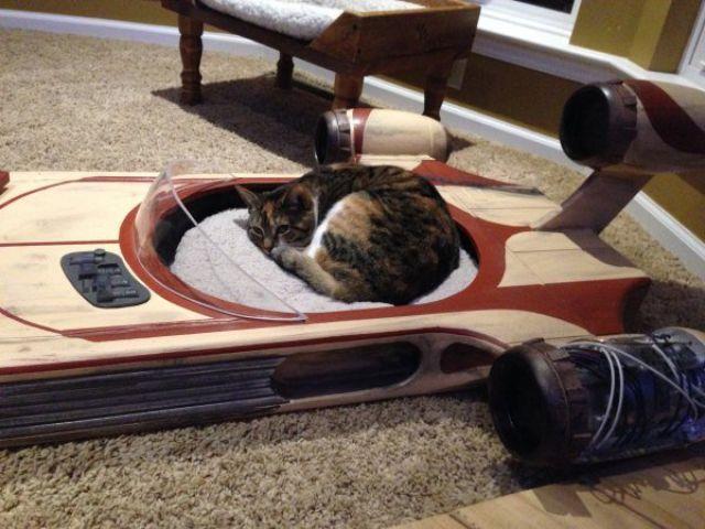 cama para perro en forma de cohete