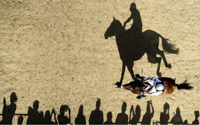 sombra de joggi forma logo de ralph lauren