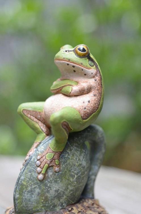rana cruzada de patas