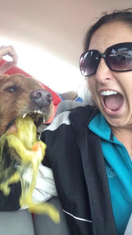 selfie mientras el perro vomita