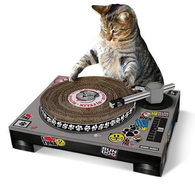 tallador de uñas para gato en forma de dj