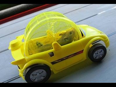 hamstermovil amarillo