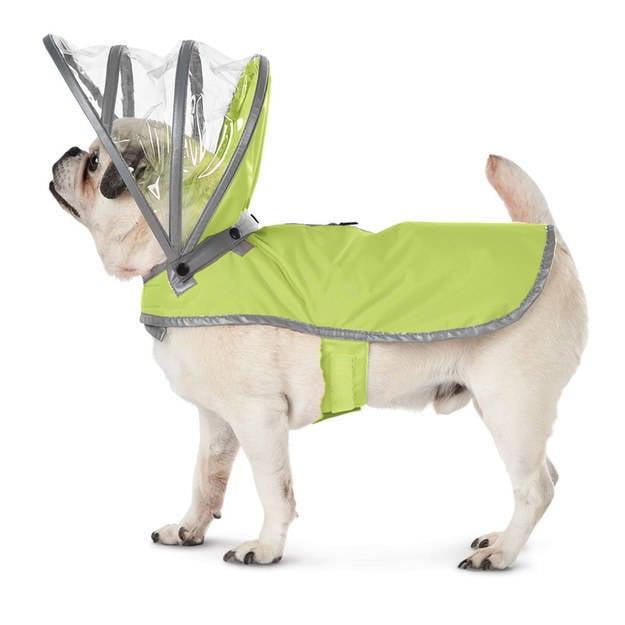 impermiable con paraguas para mascota