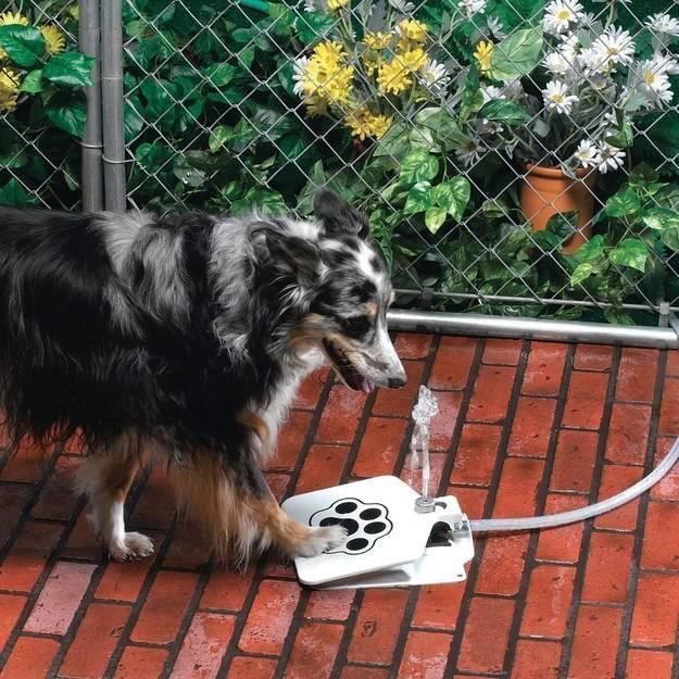 un vertedero manual para mascotas