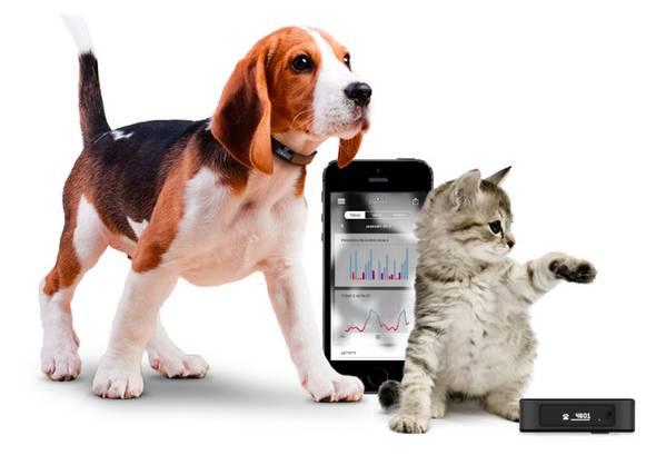rastreador para mascotas