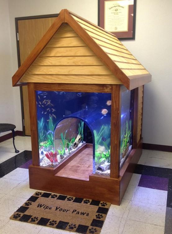 una casa para perro con acuario