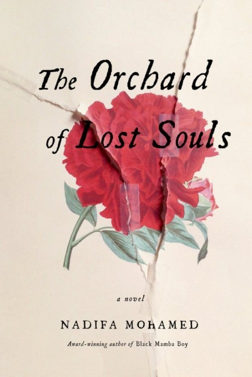 The Orchard of Lost Souls por Nadifa Mohamed