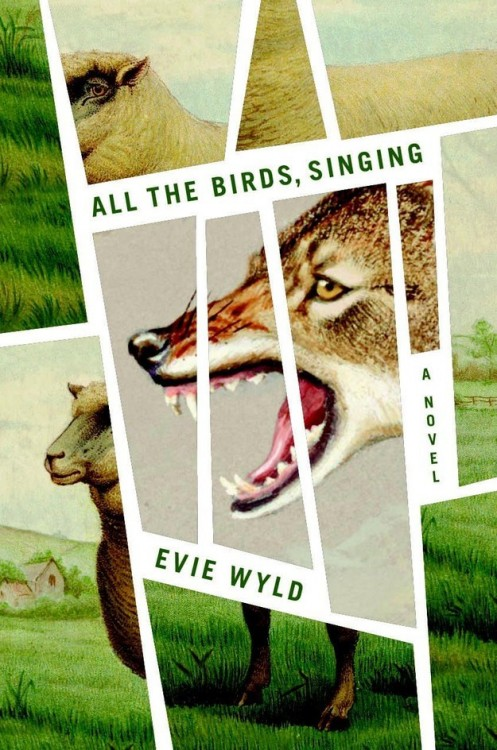All the birds, singing por Evie Wyld