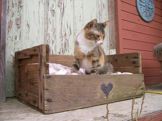 cama para gato hecha con pallets diy