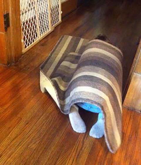 un bebé escondido debajo de un tapete en el suelo