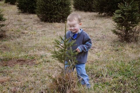 niño con los ojos cerrados frente a un  árbol