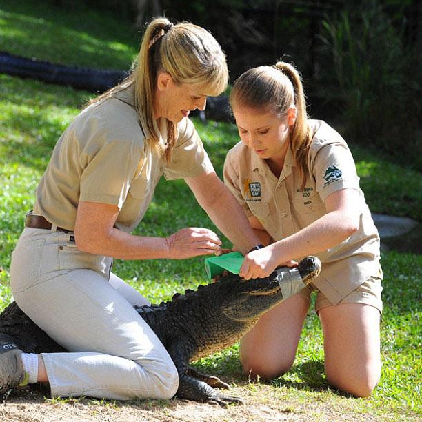 Bindi IRwin junto a su mamá con un cocodrilo