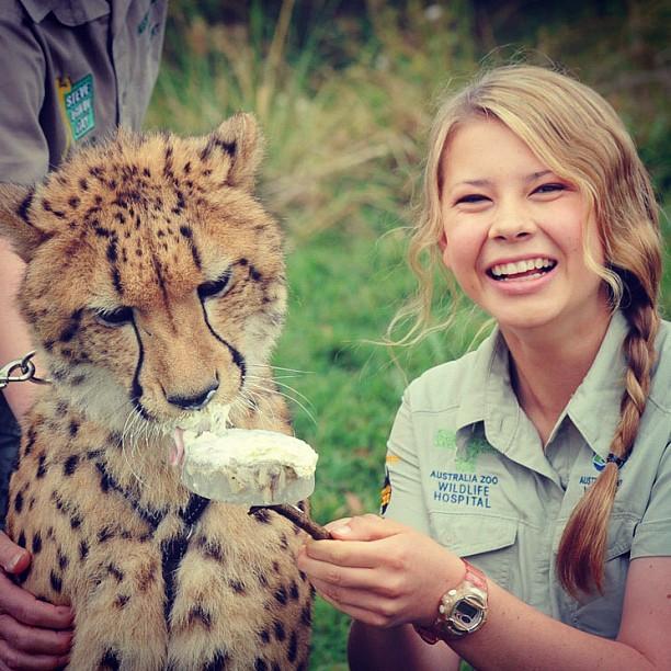 Bindi Irwin junto a un guepardo alimentándolo