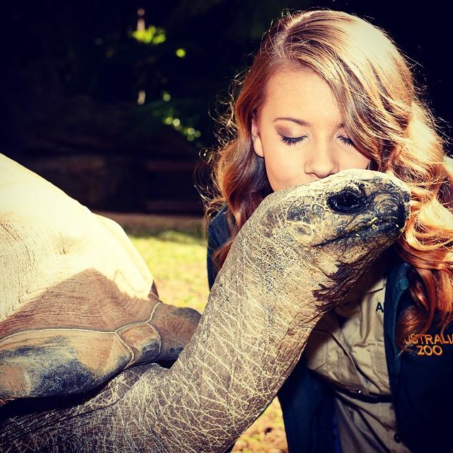 Bindi Irwin besando a una tortuga