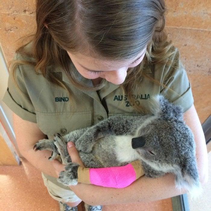 Bindi Irwin cargando en brazos a un pequeño koala lastimado de una de sus patas