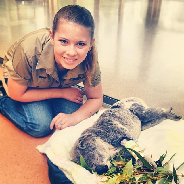 Bindi Irwin frente a un pequeño koala acostado