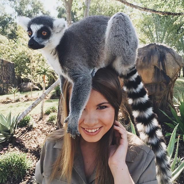 Bindi Irwin hija de Steve Irwin con un animal en su cabeza