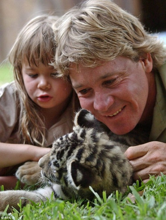 Steve Irwin junto a su hija Bindi Irwin con un pequeño puma acostados en el pasto