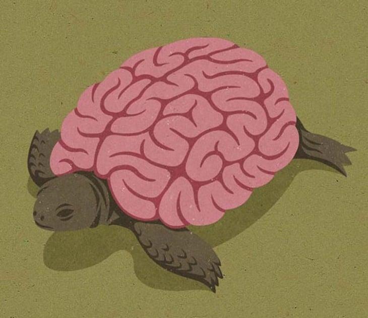 una tortuga con cuerpo de cerebro