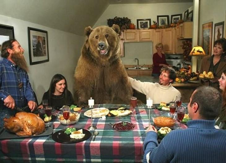 Imagen de brutus el oso junto a la familia donde fue criado