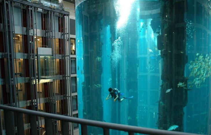 Tanque de buceo en un hotel de Dubai