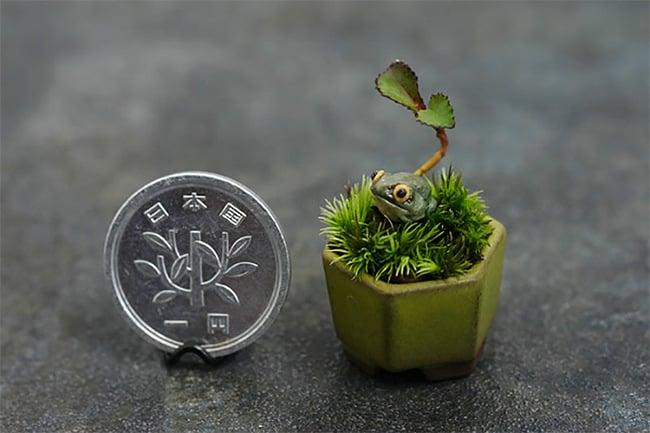 30 ideas para tener un mini jardín en casa
