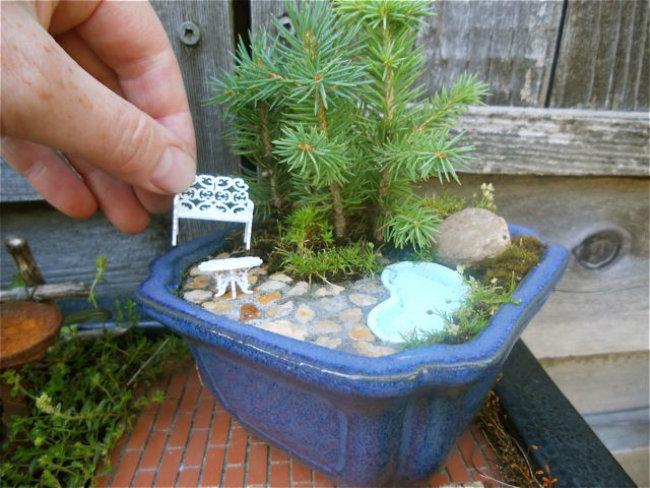 Mini jardín dentro de una pequeña maceta