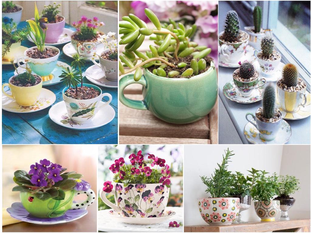 30 ideas para tener un mini jard n en casa for Como elaborar un jardin