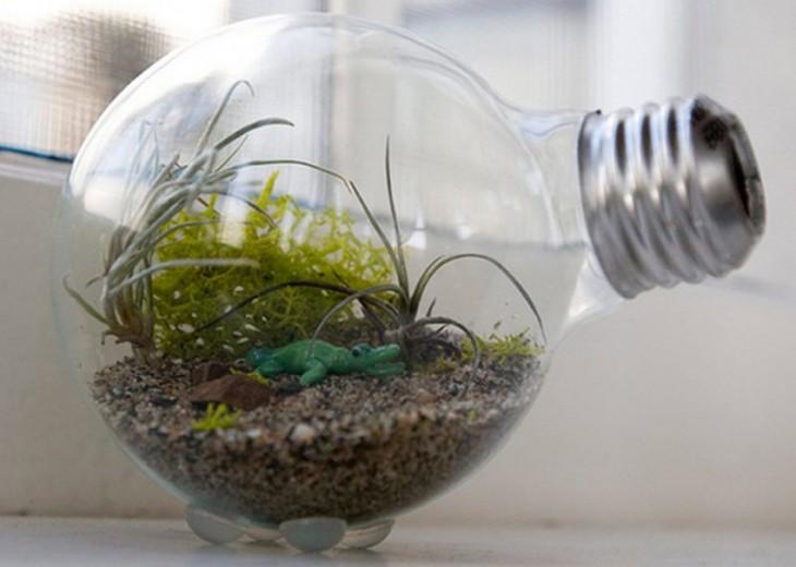Mini jardín dentro de una bombilla