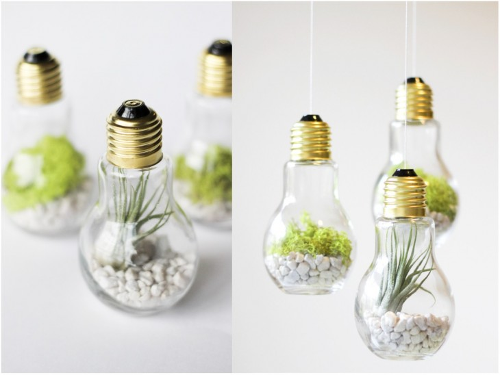 Mini jardín hecho dentro de bombillas