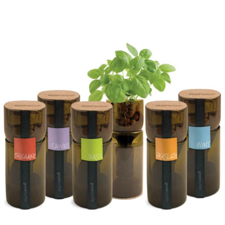 Mini jardín dentro de botellas de vidrio