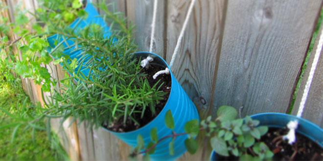 Mini jardín dentro de latas en color azul