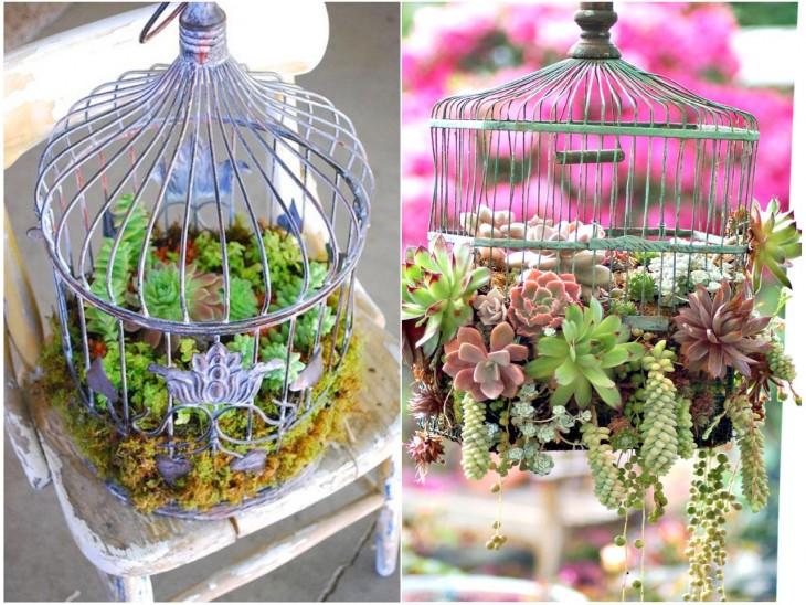 Mini jardín dentro de unas jaulas de pájaros