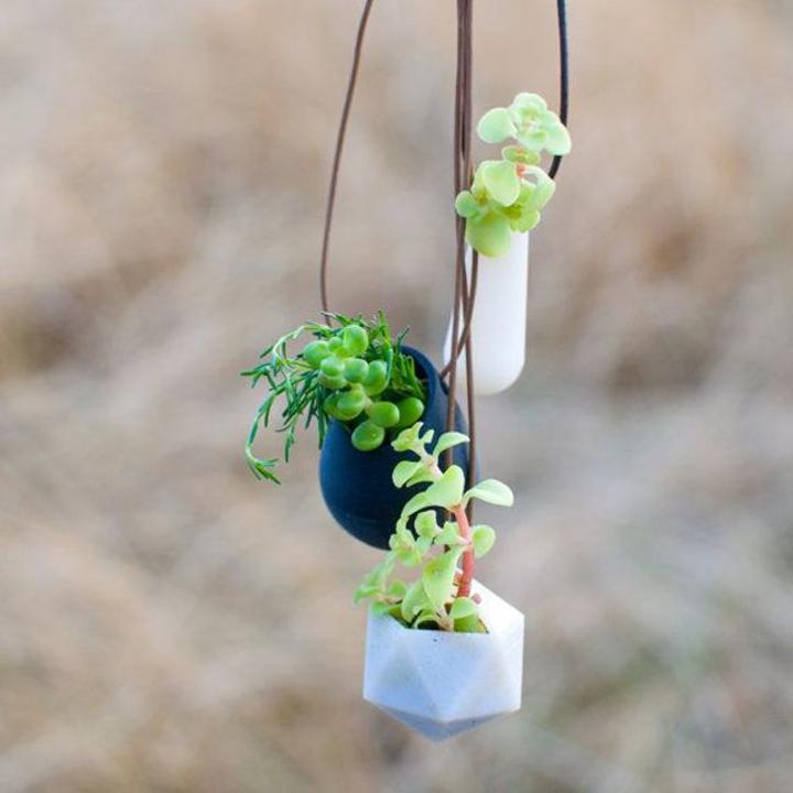 Mini jardín dentro de colgantes para el cuello