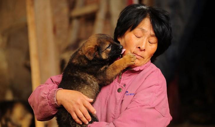 Un pequeño perro lamiendo el cachete de una mujer que lo tiene en sus brazos