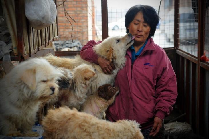 Mujer salva de masacre a perros en un festival de China