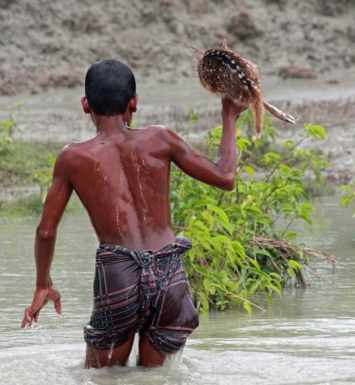 niño caminando por un río salvando a un ciervo de ser ahogado