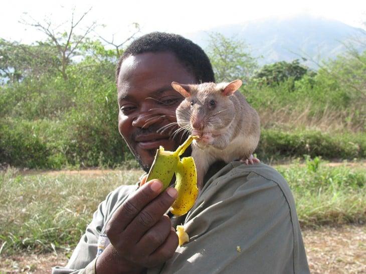 Persona en áfrica sobre el hombre de un hombre siendo alimentada con plátano