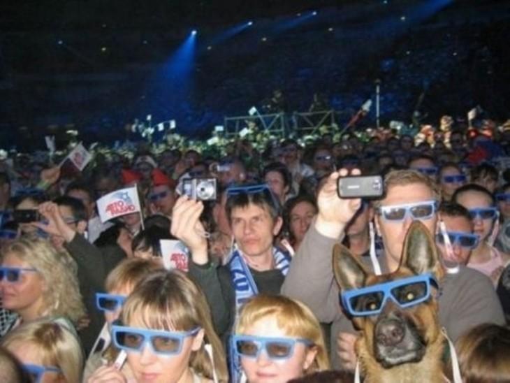 Una multitud de gente en un concierto donde entre los asistentes se encuentra un perro